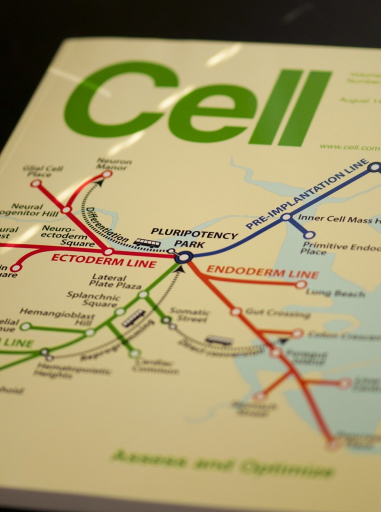 The cover depicts an adaptation of the Boston subway system map in which subway lines represent pathways of differentiation from pluripotent stem cells. Bus routes, shown as dashed lines, are the various ways that cells can be experimentally interconverted via directed differentiation, direct conversion, and reprogramming.