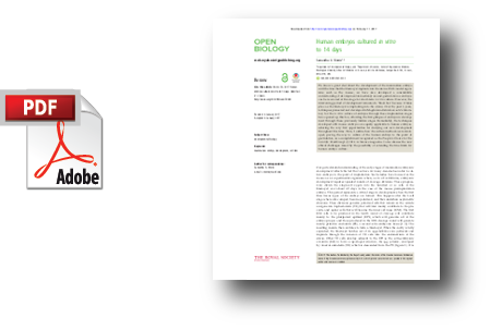 Open Bio Paper